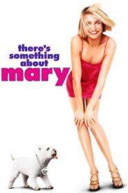 There's Something About Mary (1998) มะรุมมะตุ้มรุมรักแมรี่หน้าแรก ดูหนังออนไลน์ ตลกคอมเมดี้