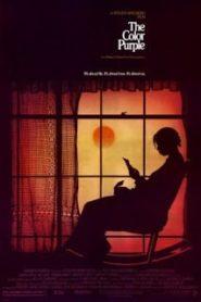 The Color Purple (1985) เลือดสีม่วง [Soundtrack บรรยายไทย]หน้าแรก ดูหนังออนไลน์ Soundtrack ซับไทย