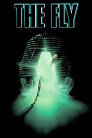 The Fly (1986) ไอ้แมลงวัน (สยองพันธุ์ผสม)หน้าแรก ดูหนังออนไลน์ แฟนตาซี Sci-Fi วิทยาศาสตร์